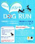 横浜港シンボルタワーにて水遊びドッグラン初開催!
